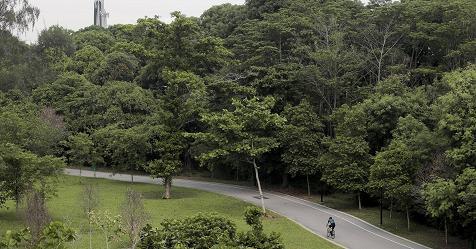 Nuova ordinanza chiude parchi e ville. Sport solo vicino casa